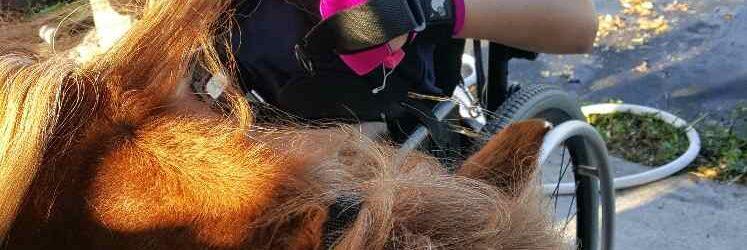 pony brush2